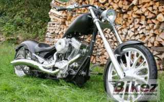 Мотоцикл Bear Bones 100 Smooth Carb (2010): технические характеристики, фото, видео