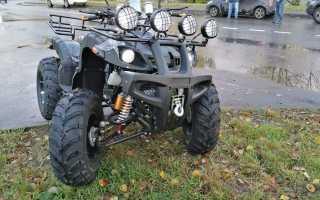 Мотоцикл Raptor 300 (2008): технические характеристики, фото, видео