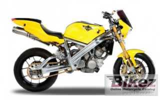 Мотоцикл 1050 Viking (2011): технические характеристики, фото, видео
