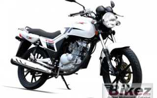 Мотоцикл TZX 125 (2010): технические характеристики, фото, видео