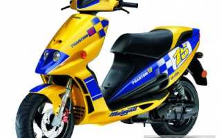 Мотоцикл Phantom 50 GP (2007): технические характеристики, фото, видео