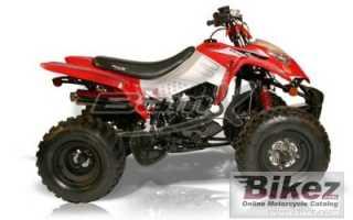 Мотоцикл BX250-S1 Assault (2010): технические характеристики, фото, видео
