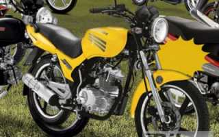 Мотоцикл Speed 150 (2010): технические характеристики, фото, видео