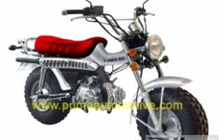 Мотоцикл T-Rex 125 (2010): технические характеристики, фото, видео