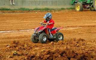 Квадроциклы для детей на бензине – виды, советы по выбору